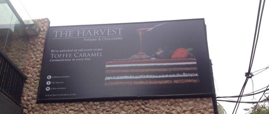 The Harvest  Senopati 134556